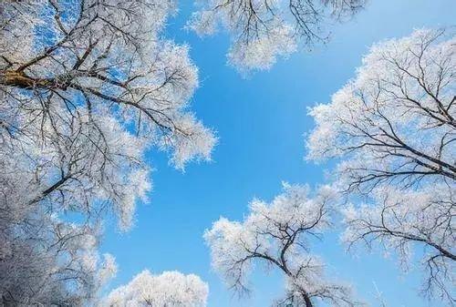 冬至节气养生:中老年人避免几件事、吃对牛羊肉,平安过一冬
