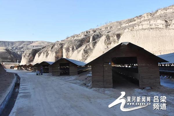 38妇女节手抄报图片石楼小蒜镇:水貂产业带动农