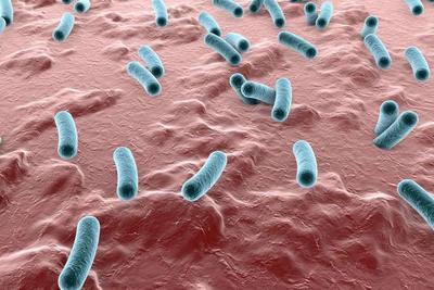 反复感染幽门螺杆菌,是怎幺回事,食疗无用?有哪些治疗方法