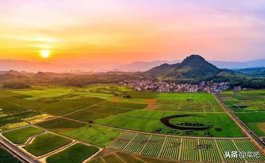 菜吧:如何发展生态循环农业?