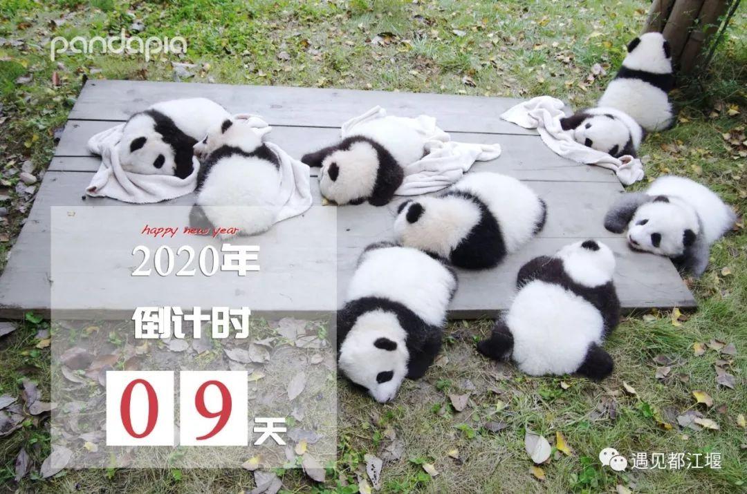 2019年仅剩9天,到都江堰做做这些事也是不错的!