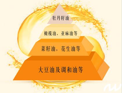 牡丹籽榨不出油!科农环宇彻底解决榨油难题 (图2)