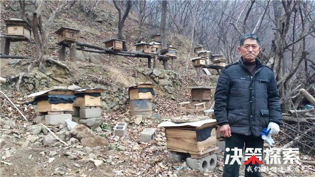 """南召县乔端镇:养蜂""""土专家""""带动群众增收致富"""