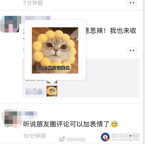 朋友圈评论表情包功能无法使用 微信 该功能已暂停