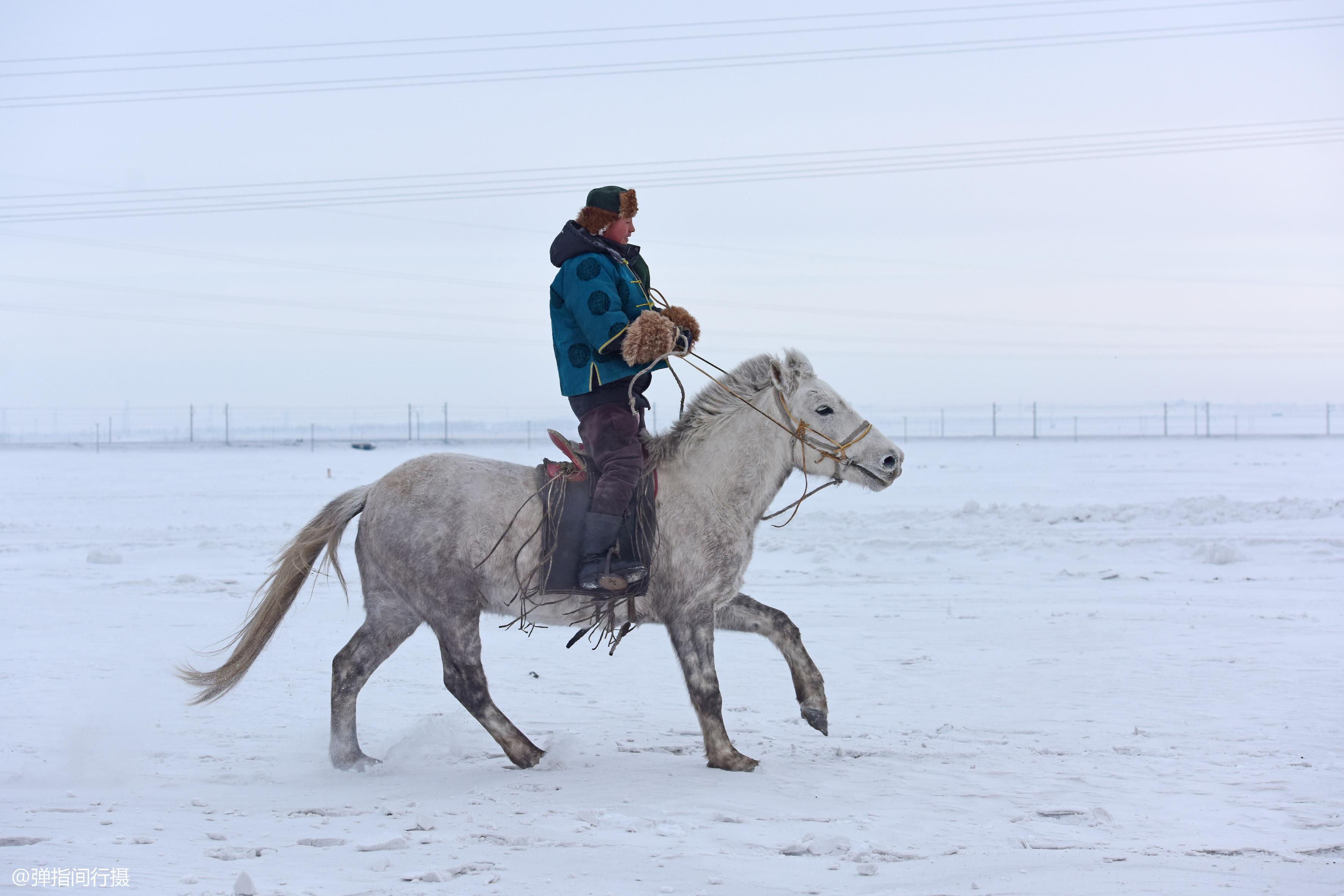 """原创             中国最低调的""""富翁"""",他们住在草原上,没有豪宅却有骏马无数"""