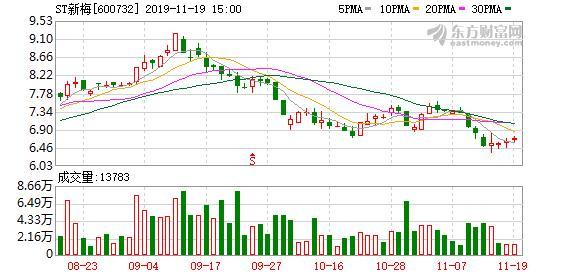 ST新梅:实际控制人质押5400万股股票,占公司总股本2.95%