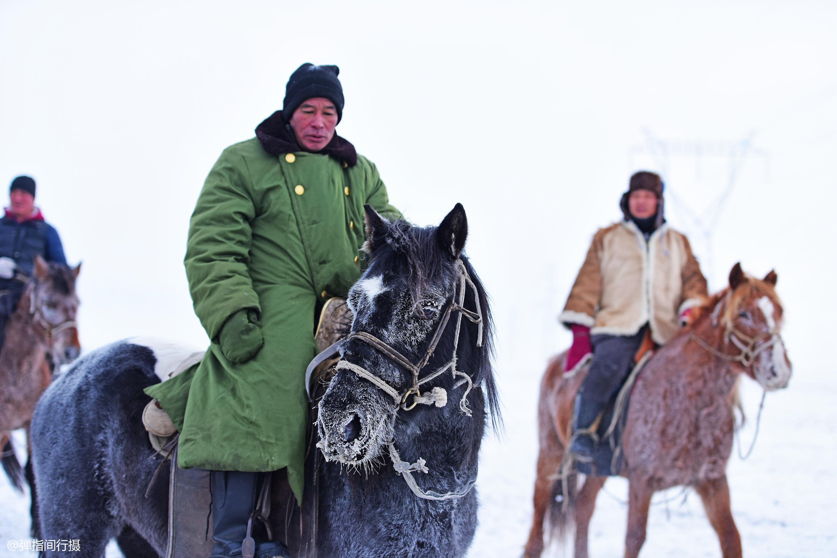 """中国最低调的""""富翁"""",他们住在草原上,没有豪宅却有骏马无数"""