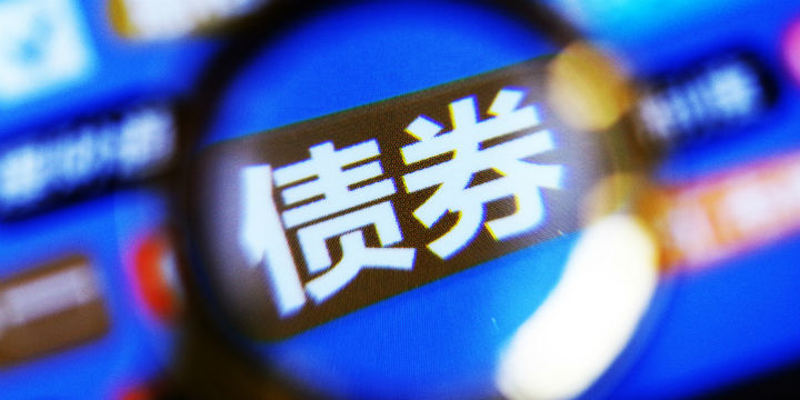 """李扬:债券投资者所谓""""国企信仰""""使民企债需求受到不利的约束"""