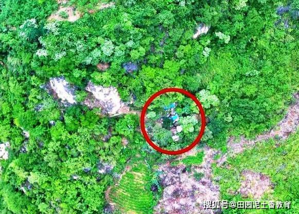 宋某江63岁越狱藏匿深山17年:喝山沟水住2平方米洞穴,因犯拐卖妇女儿童罪
