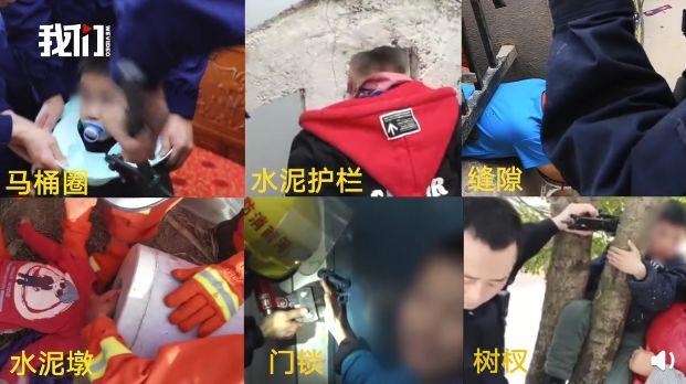 <b>2019年熊孩子年度盛典:孩子熊到最高等级会怎样?</b>