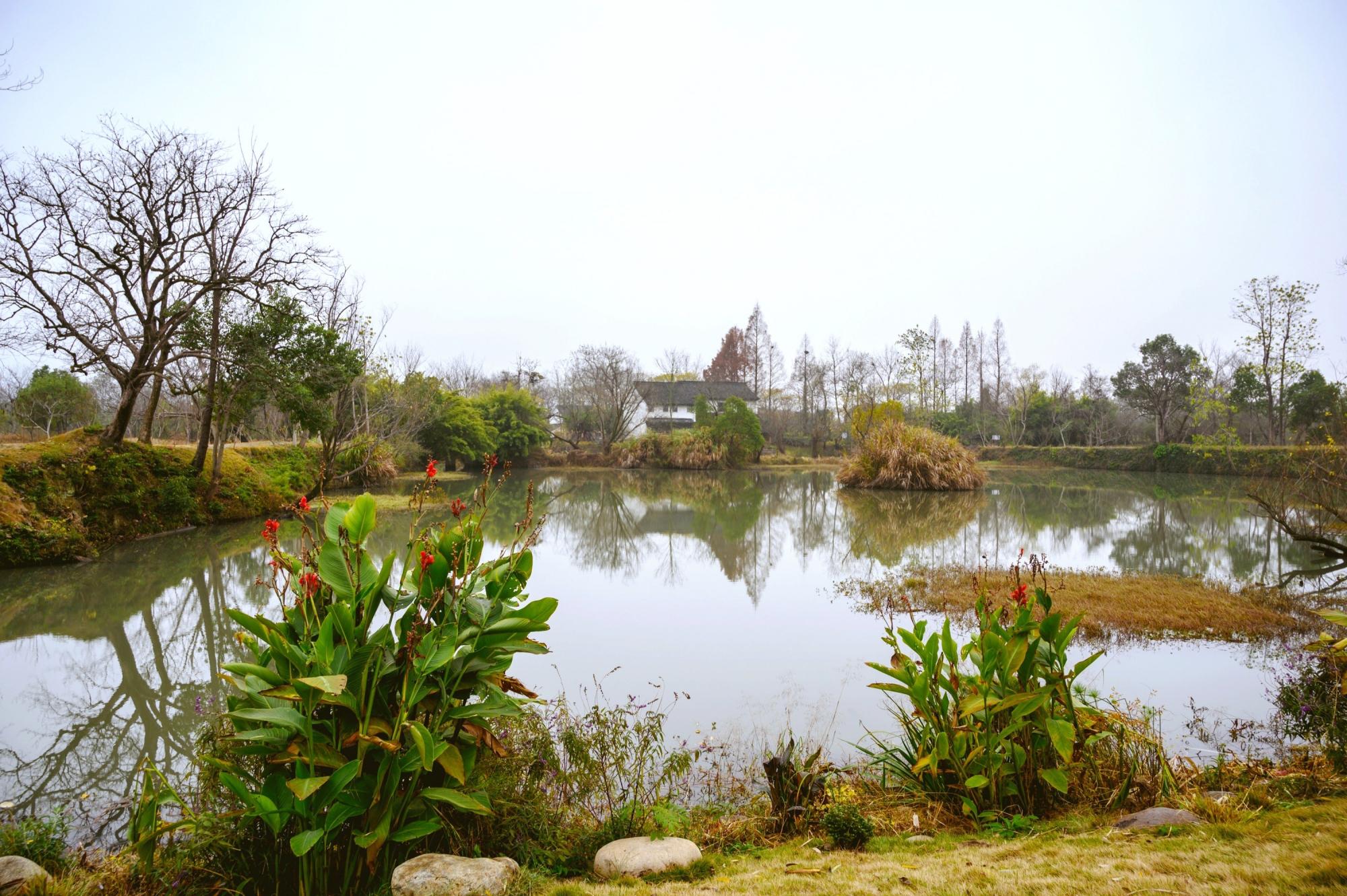 """原创 杭州十里芳菲,隐于西溪深处的""""世外桃源"""",惊艳的让时光停留"""