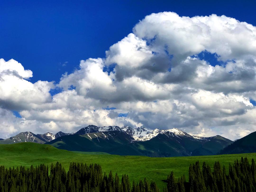 去了一趟新疆 | 你就后悔了