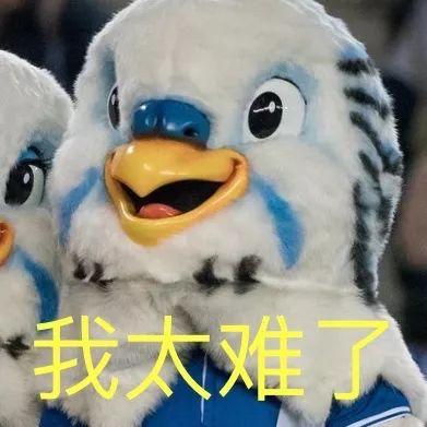 阿布扎角逐前瞻:世界第1出战李昊桐领衔中国3将