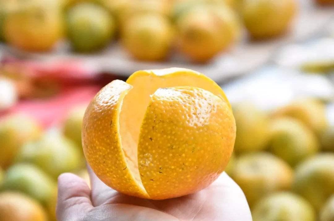 """被誉为""""祛痰良药""""的陈皮,真的就是橘子皮吗?许多人都搞错了"""