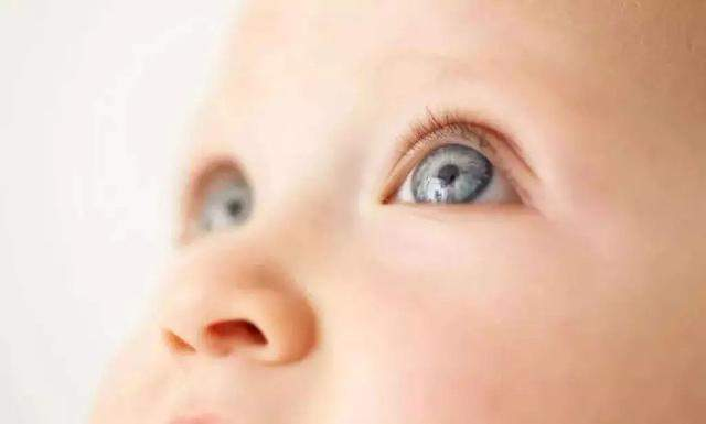 孕妈在怀孕期间多吃这些,生出来的孩子个子高、颜值好!