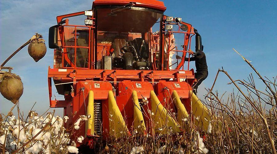 现代农装王玉荣: 2020年中农机采棉机销量小目标是超100台!