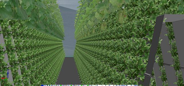 联栋温室型药草雾培工厂及茶餐厅设计 联栋温室型药草雾培工厂及茶餐厅设计