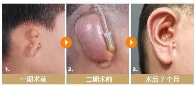 中国整形医生图鉴