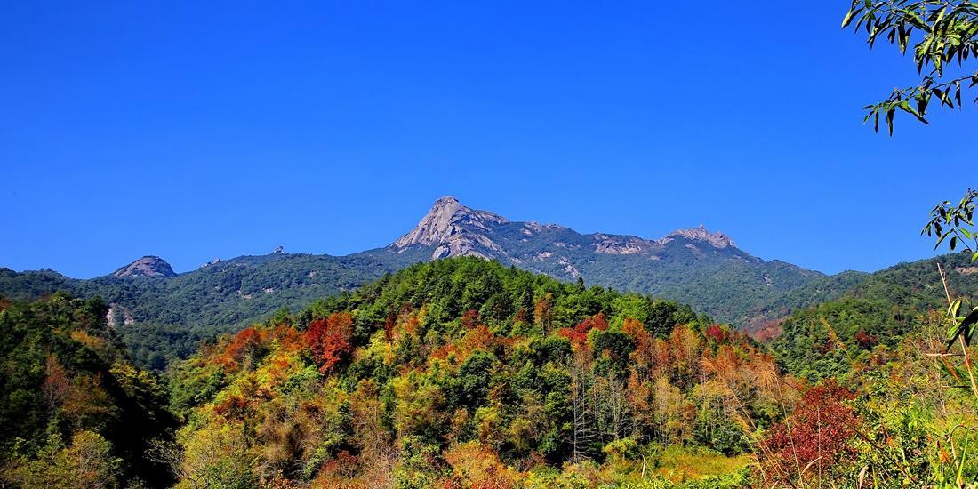 原创             广东无四季?错!进入12月,这里的冬天媲美任何北方的秋色