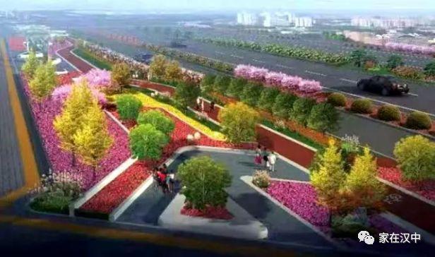 """100多种23万株,汉中正在打造""""月季""""主题大道"""