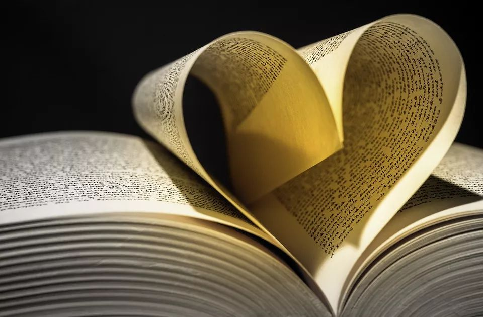 学术牛人教你怎样看外国文献!附阅读+查找+写作技巧