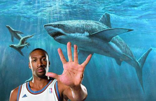 原创NBA球星消费有多奇葩?阿里纳斯天价养鲨鱼,剃个光头上千美金