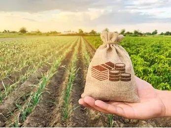 新土地管理法今日全面实施,农民迎来三大利好