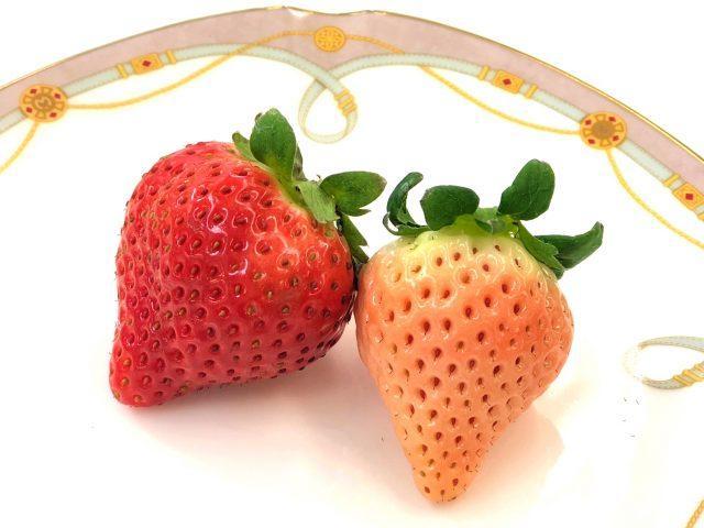 """孕妇买""""天价草莓"""",被老公骂败家,婆婆的举动暖化了儿媳的心儿"""