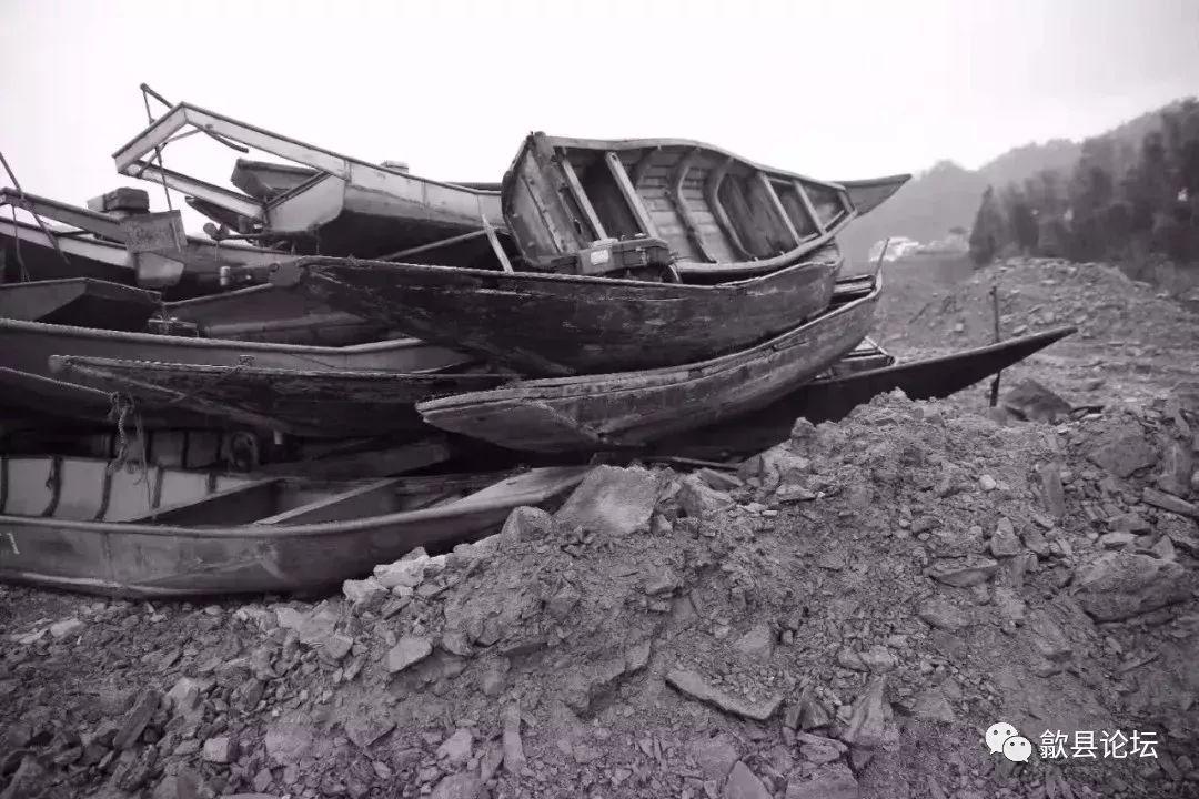 今天起,歙县新安江水产种质资源保护区等水域禁渔,具体看这......
