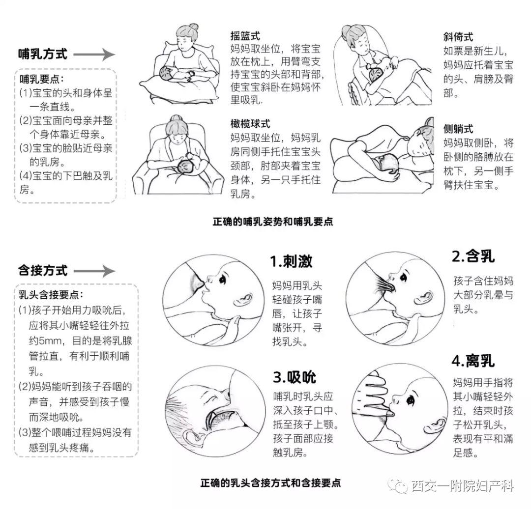 母乳喂养的好处?母乳喂养的正确姿势是什么?