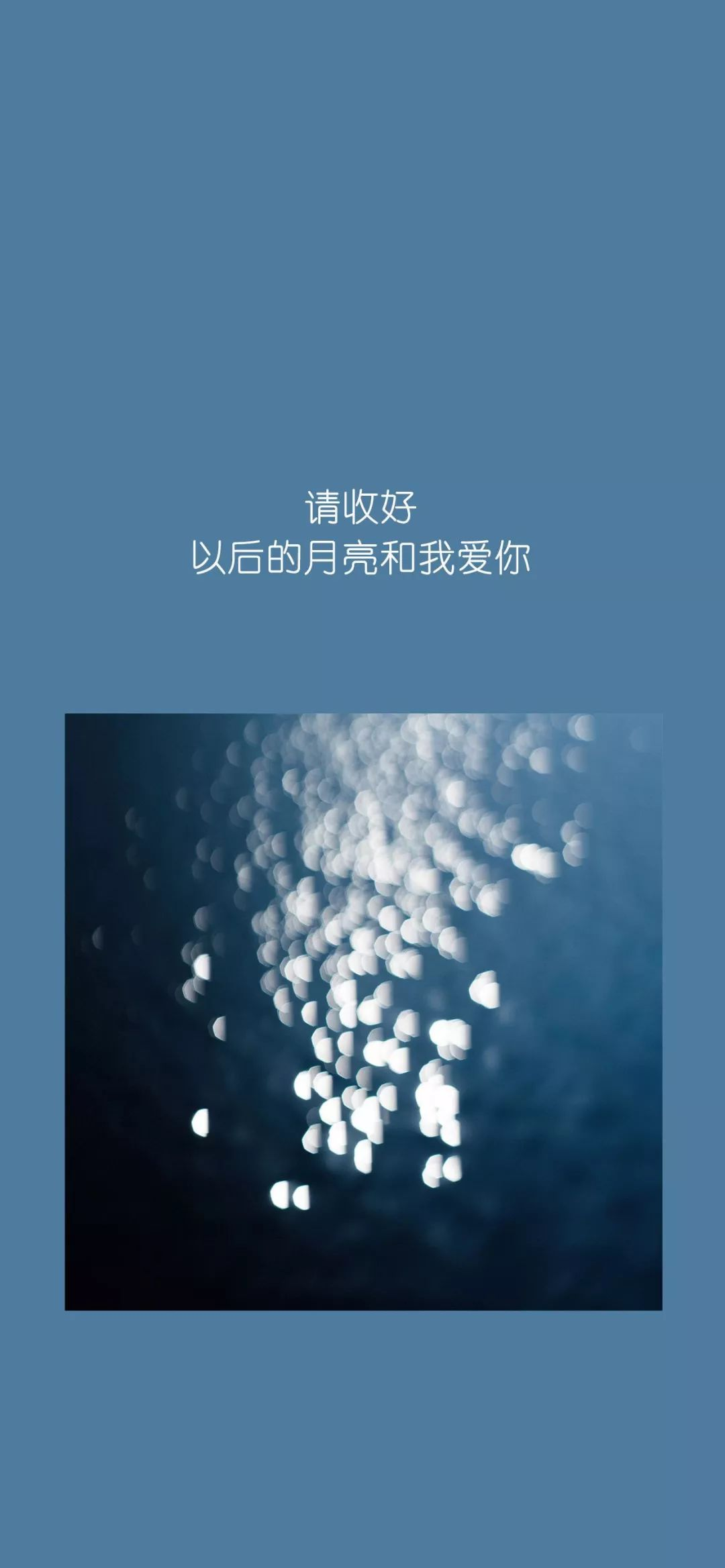 肖战2019跨年图片