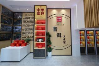 汕头首家雨林古树茶 ·普洱文化馆隆重开业!