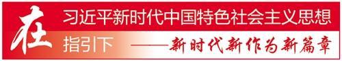 """深圳南山""""小政府""""提供"""
