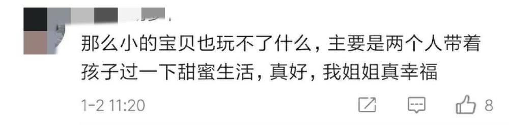 儿子首次曝光!吴奇隆刘诗诗带儿子低调游迪士尼