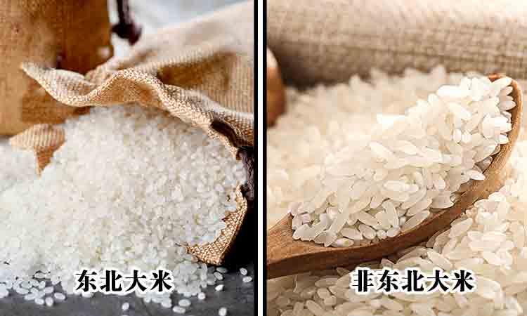 绥化大米 | 东北大米的营养价值怎么样?