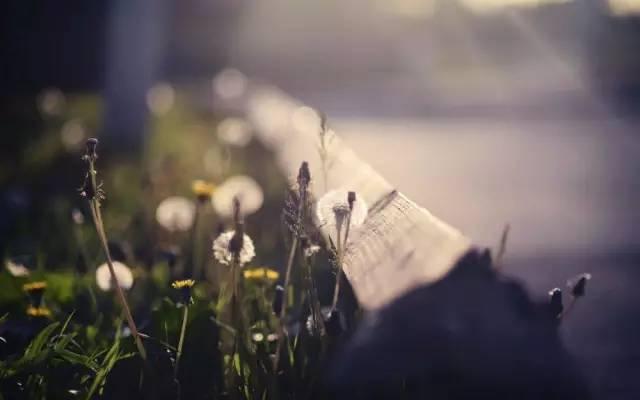 苦是生活的原味,累是人生的本质(经典)