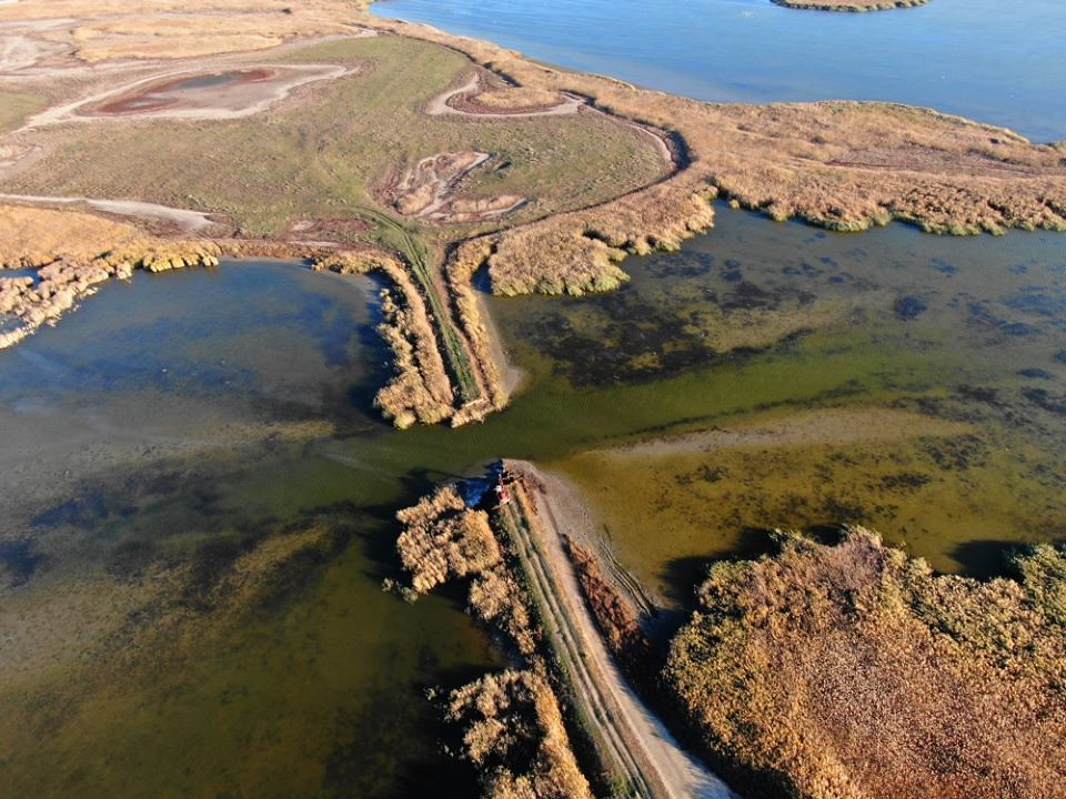 募资拆坝成功 乌克兰湿地迅速恢复