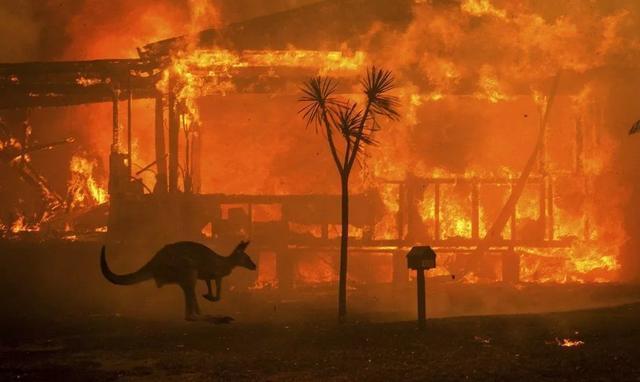 澳山火烟雾至南美 澳大利亚的山火为什么会烧这么久?