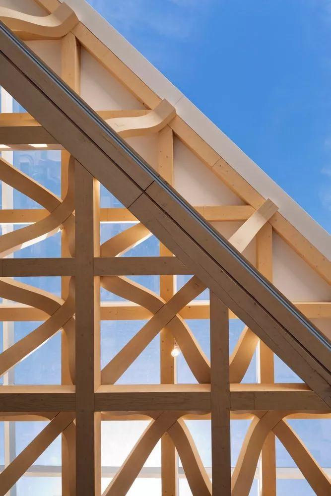 在建筑界,木材和石头谁说了算?
