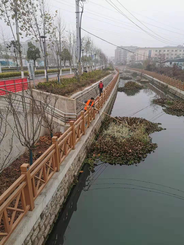 马群社区开展河道整治工作