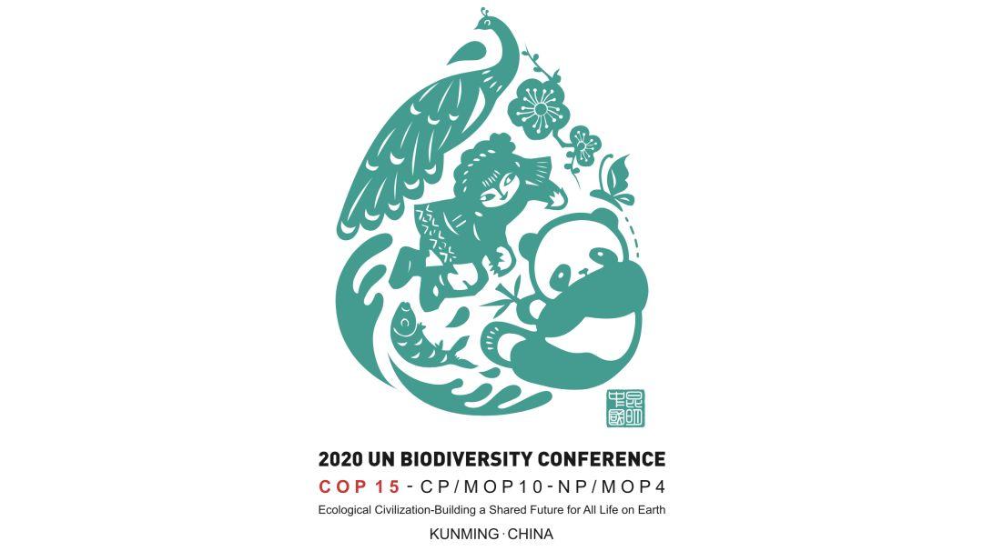 直播预告 今天15:00 联合国《生物多样性公约》秘书处代理执行秘书媒体见面会