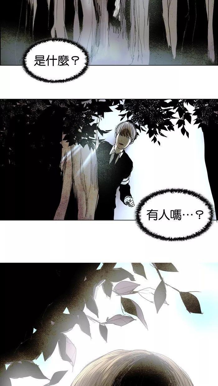 8.17韩国【苌山虎】家族神秘 少年找到失去儿子而... _手机搜狐网