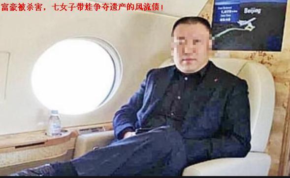 【富豪被杀害,七女子带娃争夺遗产的风流债!】