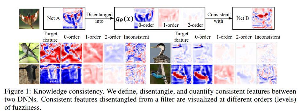 ICLR 2020 | 对神经网络特征表达一致性、可靠性、知识盲点的评测与解释