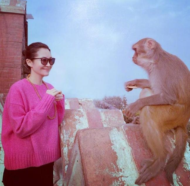 许晴久违晒照,穿粉毛衣喂猴嫩炸了,脖子上的珠珠却暴露年龄了