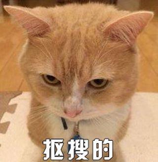 [网王]桃花债  55国中生生存手册·c委托状5.3.2