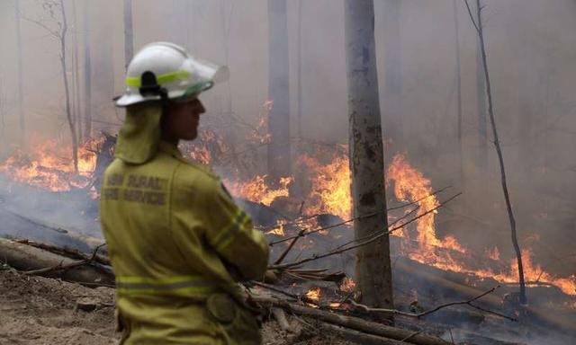 轉守為攻!澳大利亞在世紀野火災難中初現勝利曙光