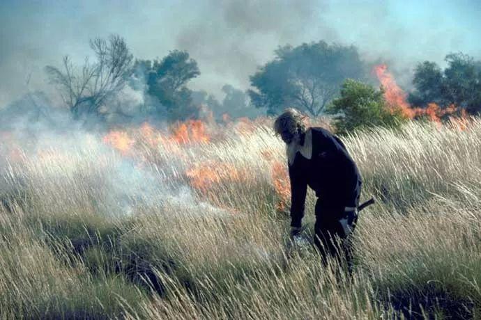 澳洲土著的治火之道