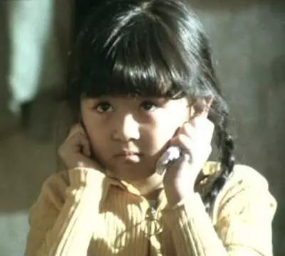 童星出身的唐宁从小美到大,如今离婚过气,辛苦抚养一双儿女