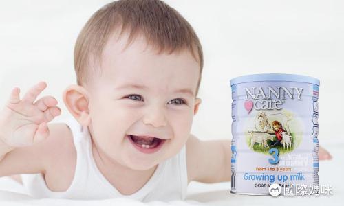 2020年国内奶粉排行_2018年国内奶粉质量排行榜